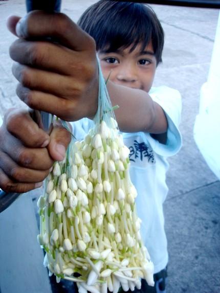 sampaguita-vendor - Sampaguita - Philippine Photo Gallery